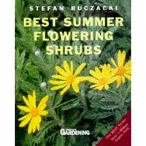 Best Summer Flowering Shrubs (amateur Gardening Guide # 10)