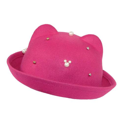 Comfortable Fashionable Style Autumn Elegant  Hat Floppy WinterHat Bowler Hat Wide Brim Hat for Girl