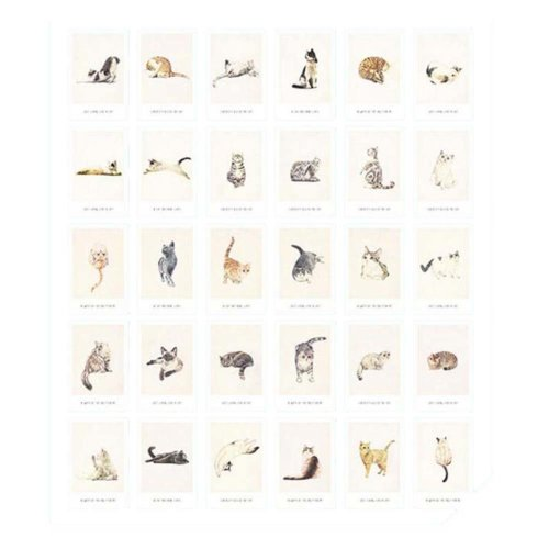 Cat Theme Collection Set Postcard Hand Set Painting Greeting Card