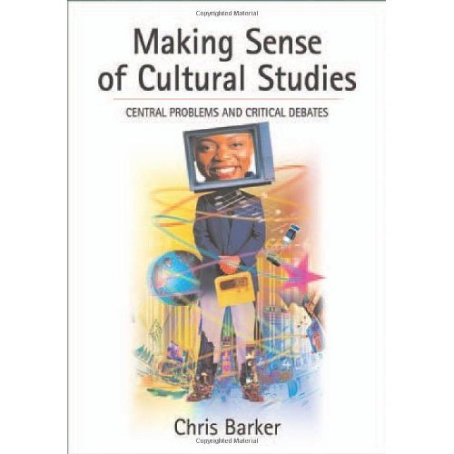 Making Sense of Cultural Studies: Central Problems and Critical Debates (Theory, Culture & Society (Paperback))