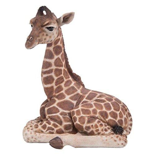 Vivid Arts Pet Pal Baby Giraffe - Resin Indoor/outdoor
