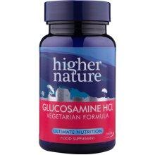 Higher Nature  Vegetarian Glucosamine Hydochloride 180s