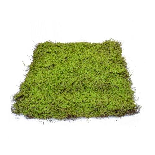 Artificial Topiary Moss Pad - 90cm x 90cm, Green