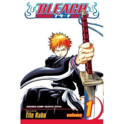 Bleach: V. 1