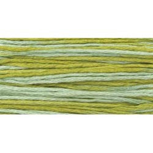 Weeks Dye Works 6-Strand Embroidery Floss 5yd-Meadow