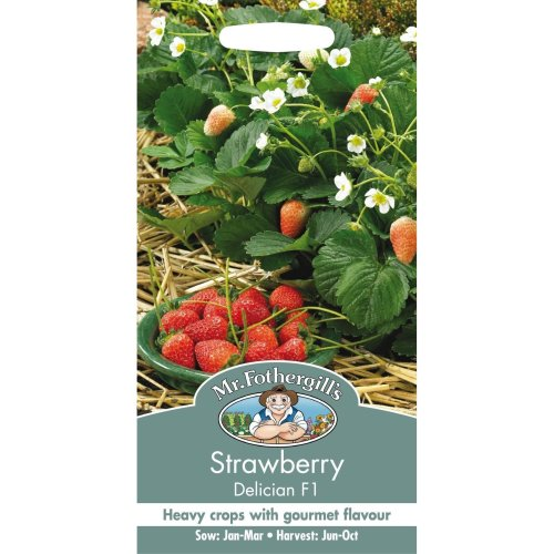 Mr Fothergills - Pictorial Packet - Fruit - Strawberry Delician F1 Seeds