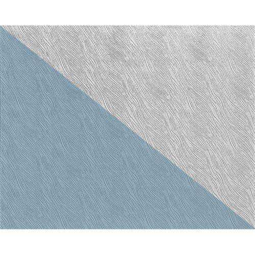 EDEM 359-70 XXL paintable non-woven wallpaper DIY deco textured white 26.50 sqm
