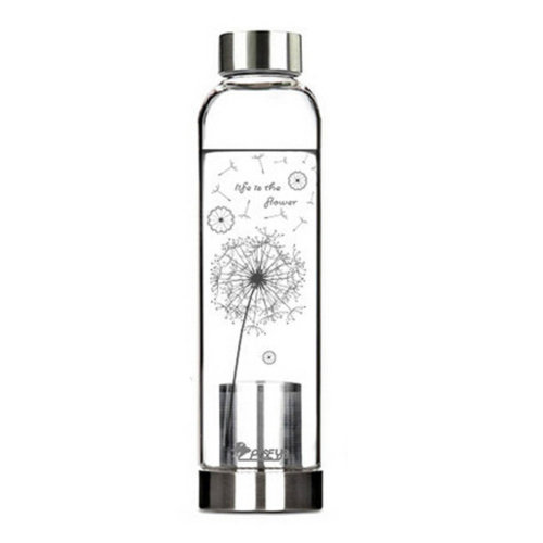 550 ML High-quality Portable Glass Water Bottle Water Container,Dandelion