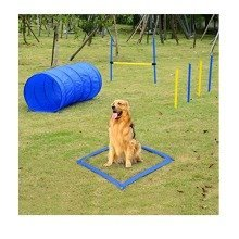 Pawhut Pet Agility Training Equipment Dog Play Run Jump Training Set Adjustable (poles + Hurdle + Tunnel + Lunch Box)