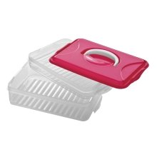 2 Layer Food Container With Carry Handle, Hot Pink