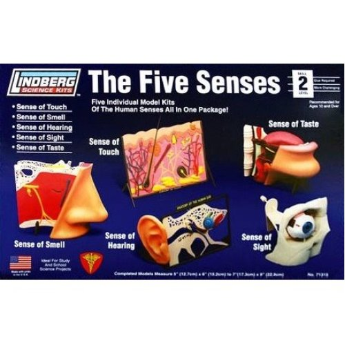 LIN71315 - *Lindberg - The Five Senses