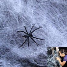 Spider Webs and Spiders | 12 Individually Wrapped Spider Webs that Contains a Plastic Spider Inside