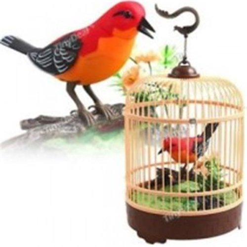 Az Import & Trading BC507B Singing & Chirping Bird in Cage - Realistic  Sounds & Movements Red