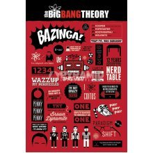 91.5 x 61cm The Big Bang Theory Infographic Maxi Poster - New Phrase Quotes -  new big bang theory infographic phrase quotes jokes poster