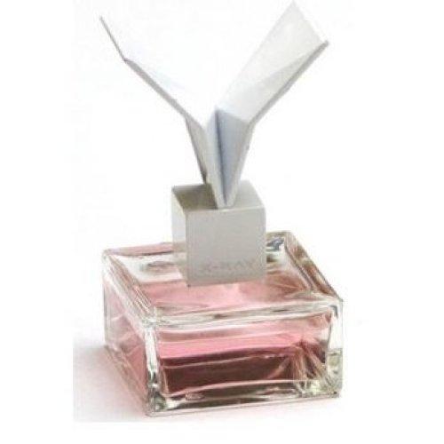 X-Ray Profumo - Plastique Perfume 50ml EDP