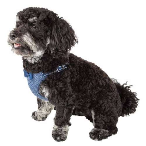 Pet Life HA60BLSM Flam-Bowyant Mesh Reversible & Breathable Adjustable Dog Harness with Designer Bowtie, Navy - Small