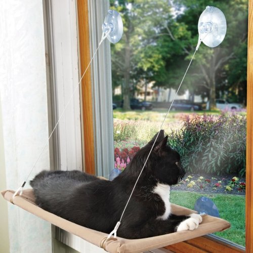Kitty Window Lounger Brown