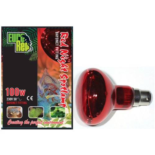 Red Night 100w Spotlamp Bayonet