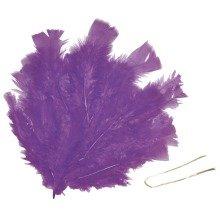 Pbx2470591 - Playbox - Easter Feathers W/ Wire (purple) - 48 Pcs