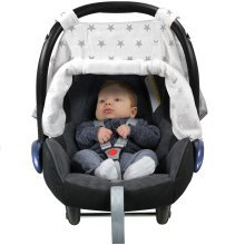 Adjustable Car Seat Canopy Silver Stars