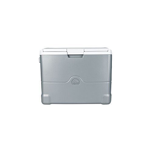 igloo 00040374 iceless thermoelectric cooler 40 quart silver