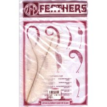 Ostrich Feathers 2/Pkg-White