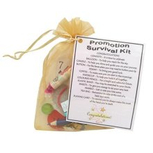 Promotion Survival Kit Gift | New Job Keepsake Gift