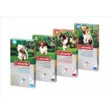 Bayer ADVANTIX flea dogs up 4 to 25kgs
