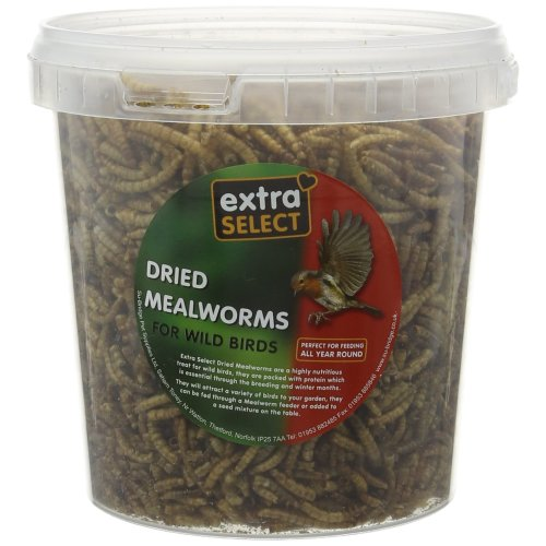 Extra Select Mealworms Tub 1ltr