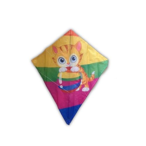 Beginners Traditional Shape Kite Garden Game Adults & Children