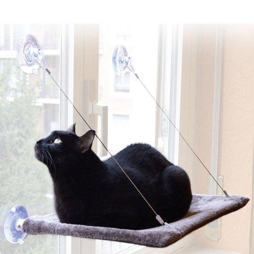 United Pets Cat View